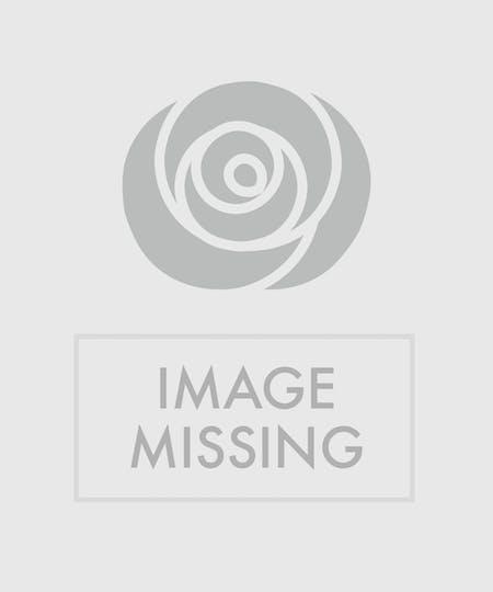 Wreaths & Crosses
