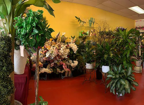 Floral arrangements and plants lining the interior of our showroom